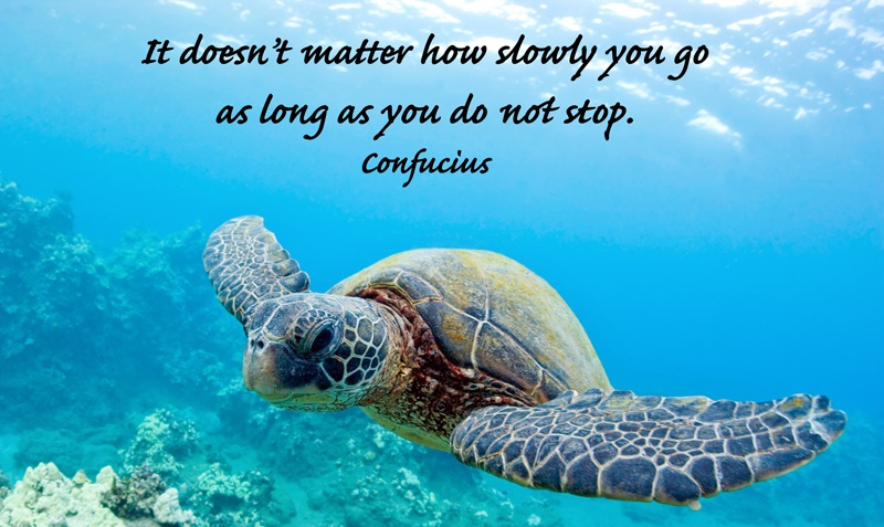 Quote of Confucius | QuoteSaga