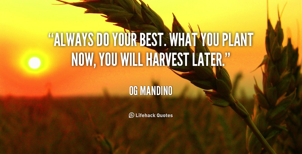 Quote Of Og Mandino Quotesaga