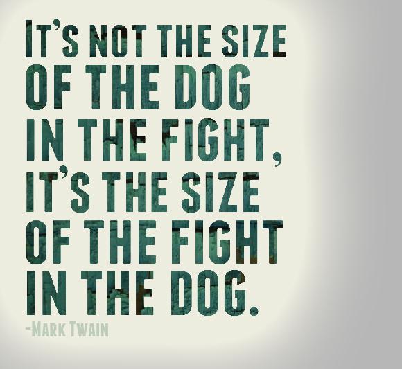 Quote Of Mark Twain Quotesaga