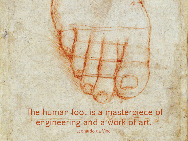 Quote Of Leonardo Da Vinci Quotesaga