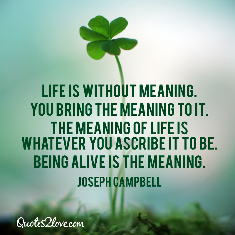 Meaning Of Life Quotes New Quote Of Joseph Campbell  Quotesaga